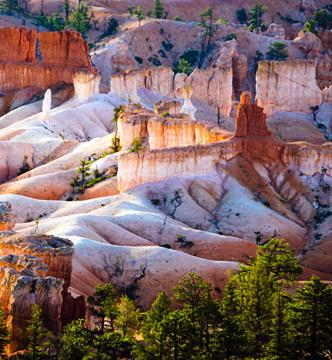 Bryce Canyon white rock