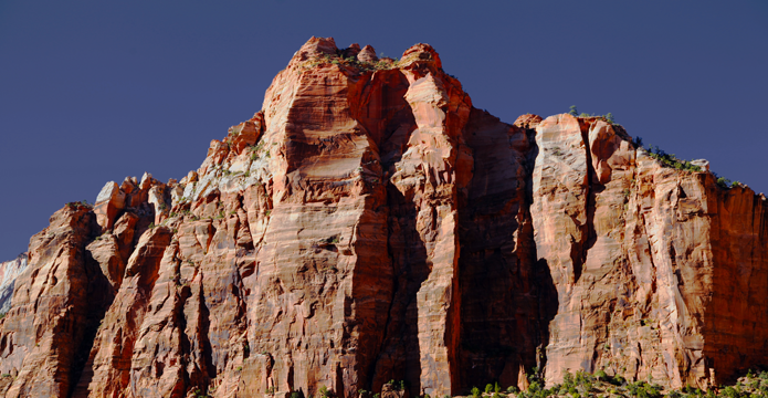 Zion red rock