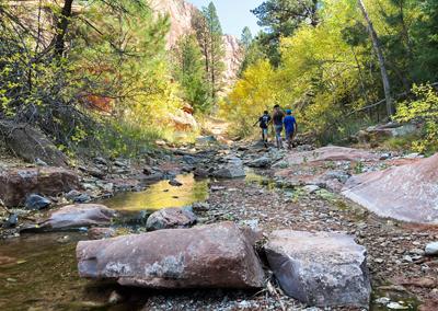 Kolob Canyon hike river bed
