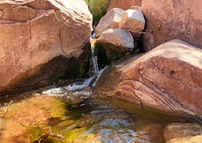 Kolob Canyon hike pooling water