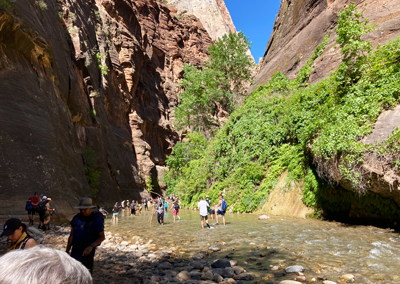 Narrows hike Zion people entering