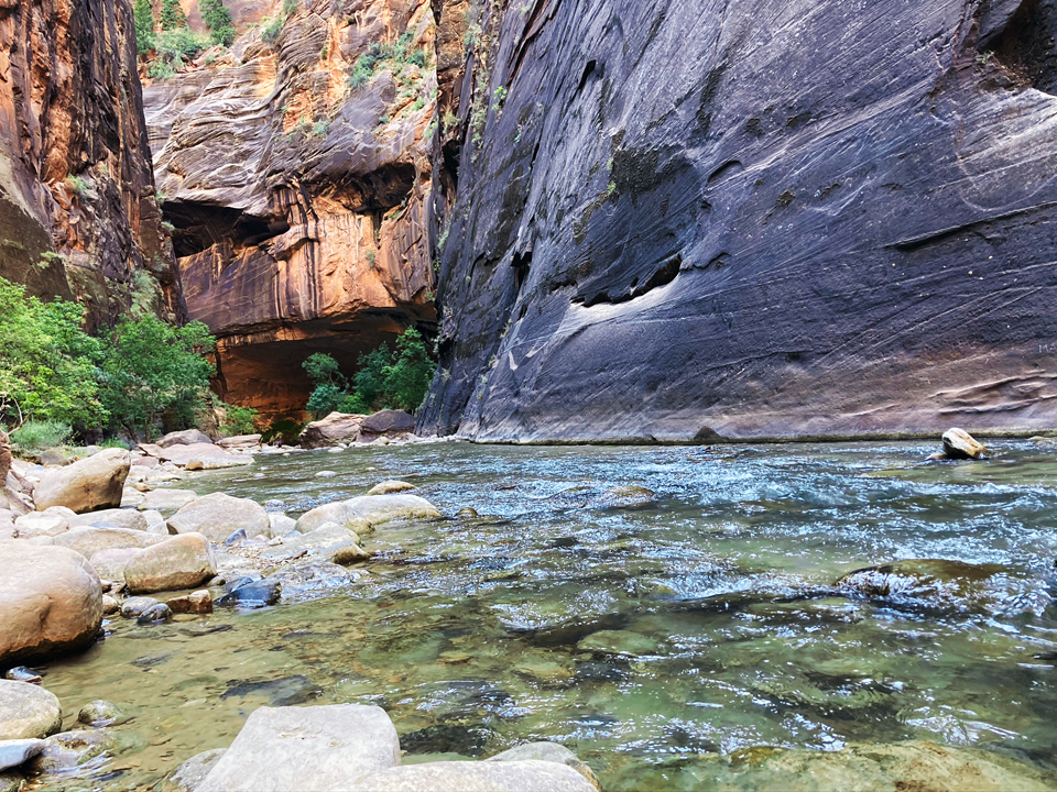 Narrows hike in Zion river bend
